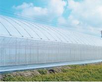 特殊溫室用透明塑膠布