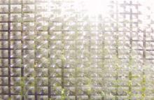 (TV WALL) 窗貼