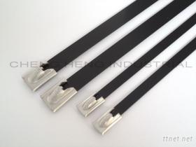 CBCT不鏽鋼滾珠式烤漆束帶