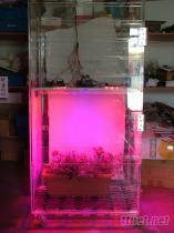 LED植物蔬菜種植培養箱