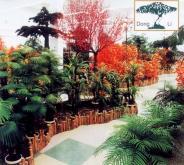 塑膠植物盆景