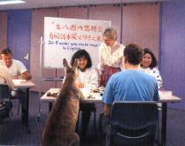 英語管理補習班