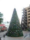 8米松針型聖誕樹