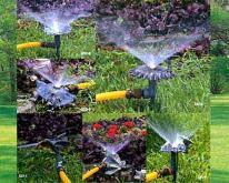 园艺洒水器