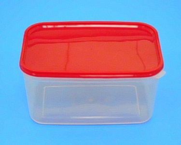 (大) 保鮮盒