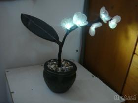 太阳能盆栽