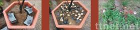 植物水壶, 花盆