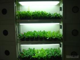 室內蔬菜栽培機