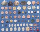 貝殼雕刻品