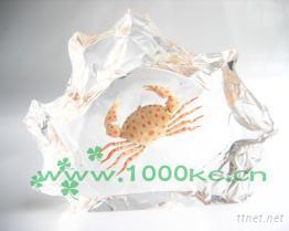 海洋琥珀飾品﹘千年情人造琥珀系列
