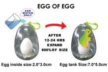蛋中蛋/膨脹蛋/恐龍蛋