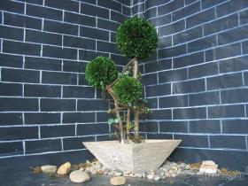 保鮮黃楊人造植物