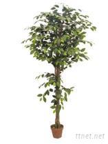 人造植物榕樹