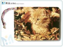 彩色木製明信片