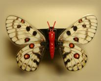 動感芳香器-蝴蝶系列