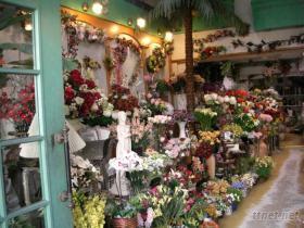 各類人造花(塑膠花)