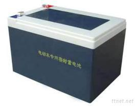 電動車蓄電池/汽車電池/電動三輪車蓄電池