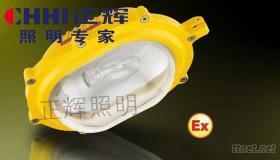 正辉BYC6120内场防爆强光泛光灯,防爆灯,泛光灯