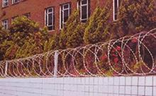 刀片刺网,防护网,护栏网