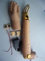 上臂三自由度開關控制假手