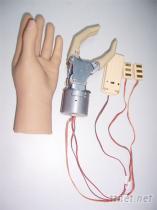 前臂雙通道肌電控制假手