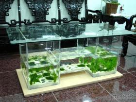 桌型生態魚缸