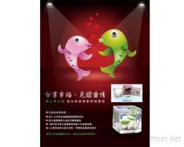 螢光魚寶寶-愛戀綠水晶