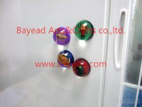 貼冰箱昆蟲琥珀裝飾品,深圳貝雅精美工藝獨家研發制造.