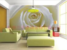 家居裝飾壁畫