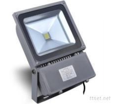 LED 户外投射灯