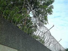 刺刀蛇籠網
