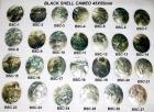 黒い貝のカメオ