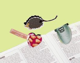 Магнитные Bookmarks
