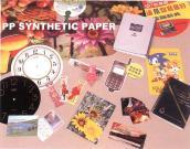 Het Synthetische Document van pp