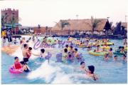 Wave Pool / Wave Machine / Water Park