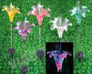 Solar Decorative Stick Light