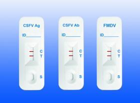 Veterinärkrankheit-schnelle Test-Installationssätze