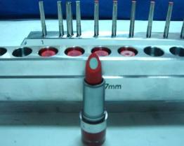 2 Color Lip Mould
