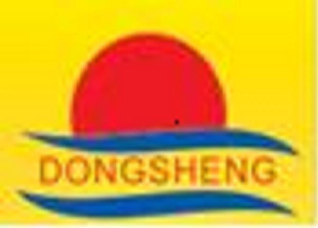 Liaocheng Dongsheng Packaging Equipment Co.,Ltd