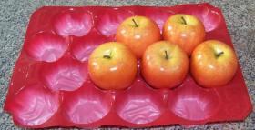 Het Dienblad van pp voor Tomaat