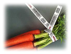 Legami di torsione delle verdure stampate carta