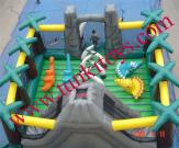 Castle Inflatable, Slide Inflatable Bouncer