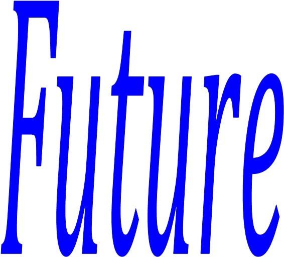 Guangzhou Future Solar Energy  Co., Ltd.