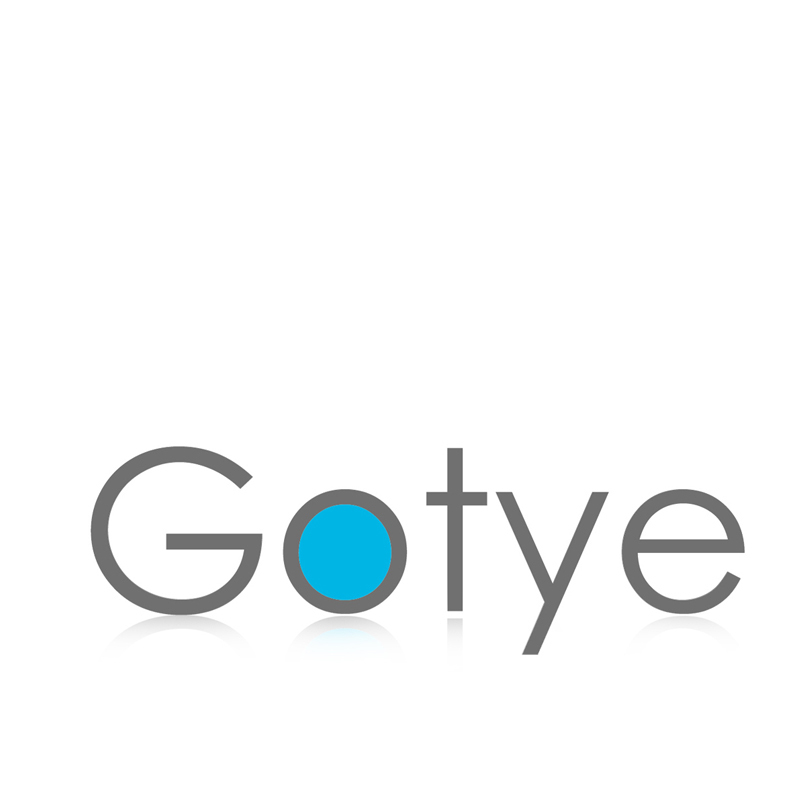 Gotye Security & Protection Co.,Ltd