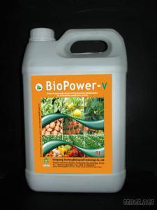 BioPower-V Seaweed Extract