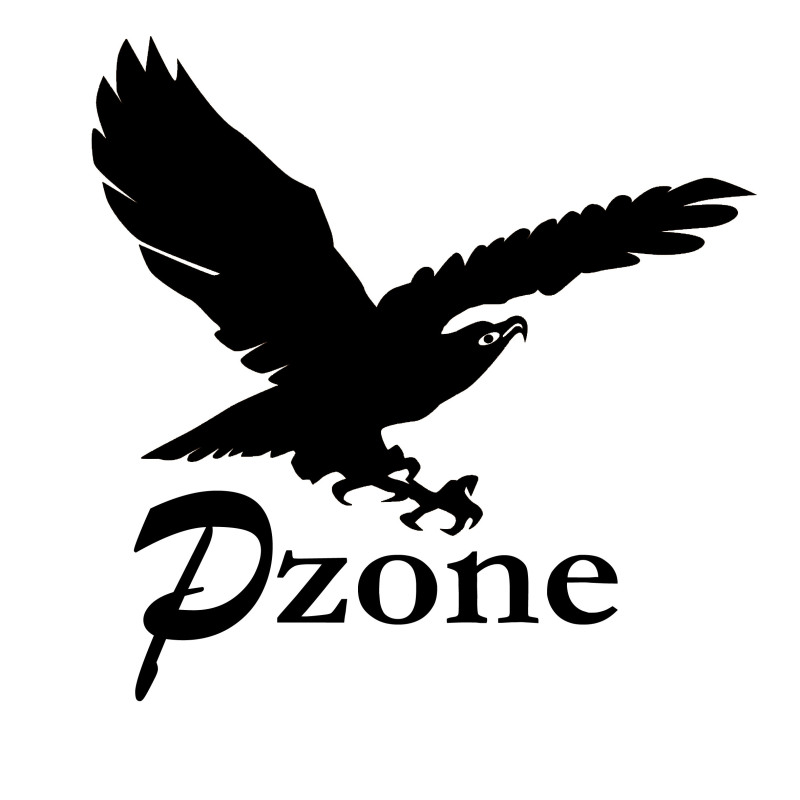 Pzone International Limited