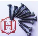 Black Galvanized Drywall Screw