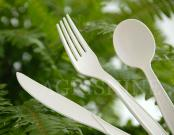 Biodegradable Cutlery