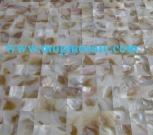 Freshwater Shell Wall DecorativeTiles And Panel