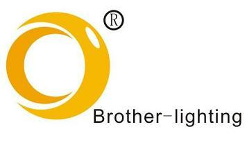 Shenzhen Brother-Lighting Limited
